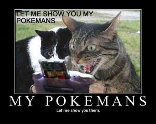 pokemanscat2